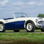 Austin-Healey-100-6-six-blue-white-03