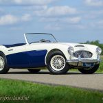 Austin-Healey-100-6-six-blue-white-16