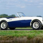 Austin-Healey-100-6-six-blue-white-18