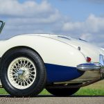 Austin-Healey-100-6-six-blue-white-20