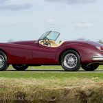 jaguar-xk-140-roadster-18